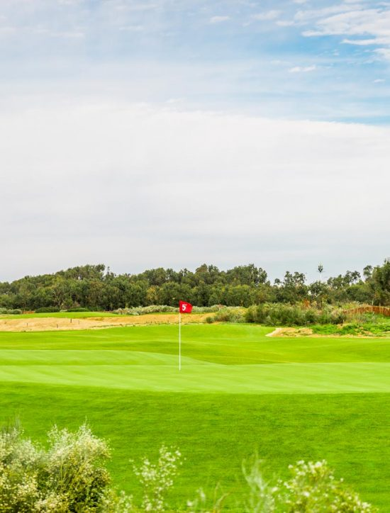 Golf Teelal